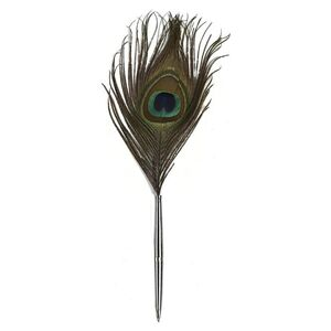 FEATHER PEN PEACOCK FEATHER